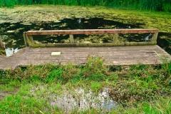 2019_08_HMIS-Mersye-Vale-Pond_008